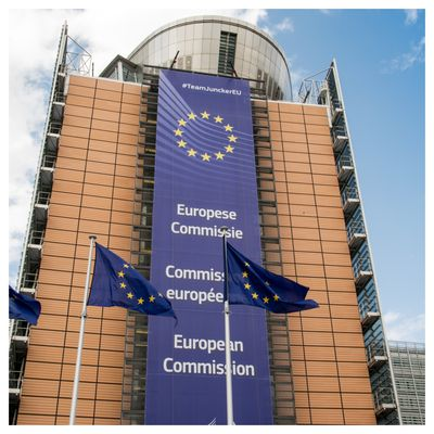 EU Sustainable Taxonomy, a call for feedback